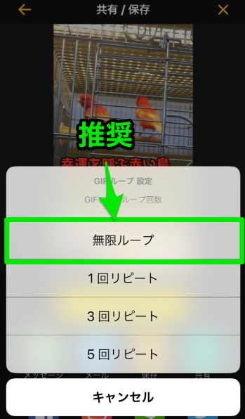 GIF動画のリピート数選択画面