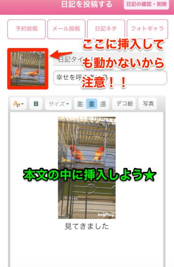 姫デコから写メ日記編集画面 GIF動画挿入