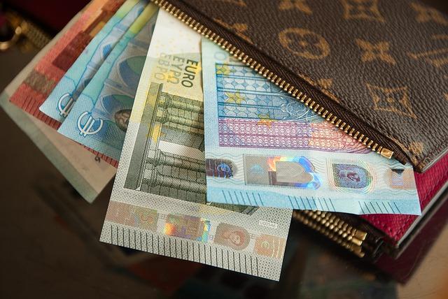 ユーロがヴィトンの財布から出ている様子